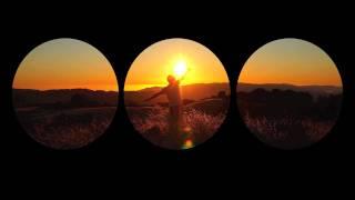 Allen Clapp & his Orchestra: Downfall No. 3