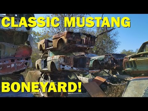Exploring a Classic Car Goldmine in Texas! Part 2 - John's Salvage
