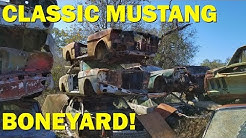 Exploring a Classic Car Goldmine in Texas! Part 2 - John's Salvage