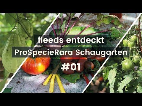 ProSpecieRara Schaugewächshaus Reusspark / fleeds Gartenbesuch #1