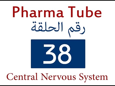 Pharma Tube - 38 - CNS - 2 - Insomnia, Anxiolytic and Hypnotic Drugs [HD]
