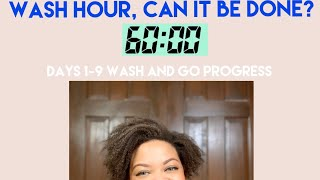Wash and go hour can it be done - 30 day hair detox- no raw oils butters or creams - 4c natural hair