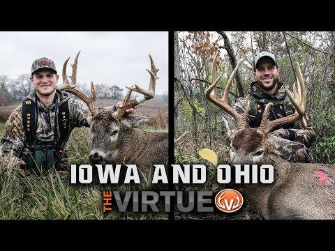 Bowhunting Iowa & Ohio - MONSTER WHITETAIL STATES  | The Virtue TV S4//E21