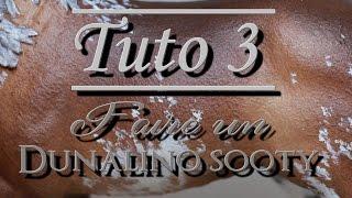 [TUTO 3] Dunalino sooty