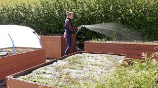 Maj w ogrodzie. Kalendarz ogrodnika na 27.04 - 03.05. Prace ogrodnicze w maju