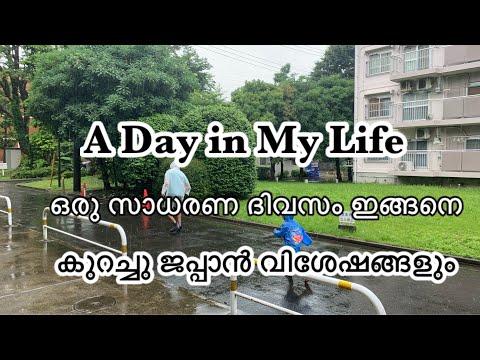 ഒരു മഴ ദിവസം || Easy Pulav Recipie || A Day In My Life || JIkkus Mom In Japan
