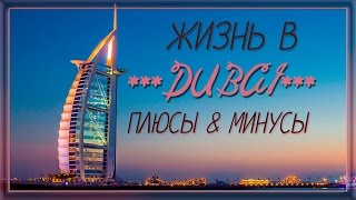 Дубай. Голая правда жизни в Дубай. Плюсы и минусы.