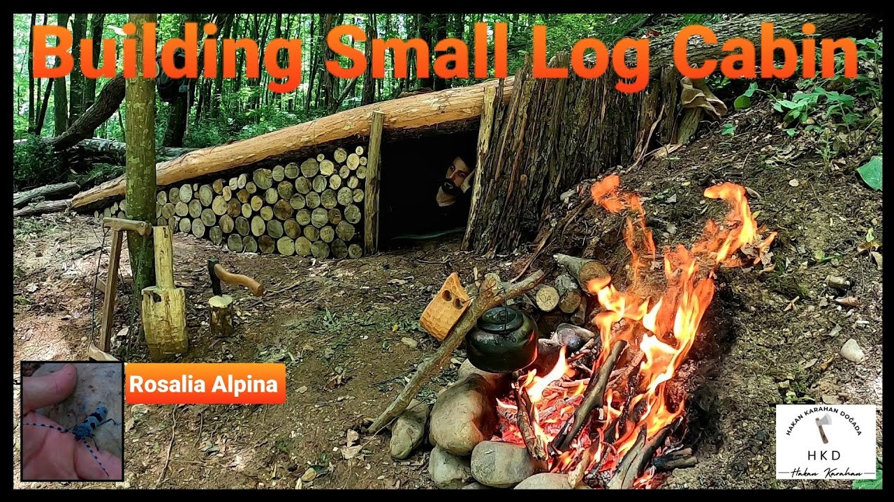 Bushcraft Shelter Camping - Off Grid Cooking, Survival Skills, Campfire, Asmr, Diy