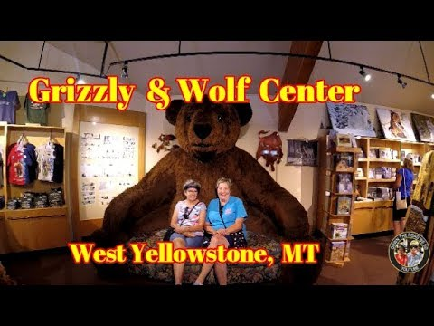 West Yellowstone Grizzly & Wolf Discovery Center - Off to Bruneau Dunes State park ID - S2 EP044
