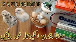 Homemade Mini PTC Incubator   Make a Modern incubator   Make 12V incubator with W1209