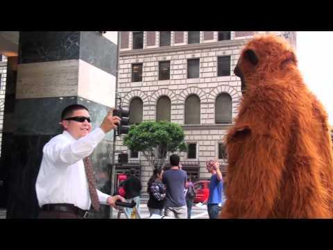 Orangutans Visit HSBC Bank