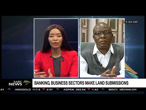 Banking, business sectors Parliament land submissions: Manelisi Dubase