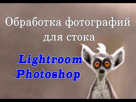 Обработка фотографий для стока.  Обработка в Lightroom Photoshop