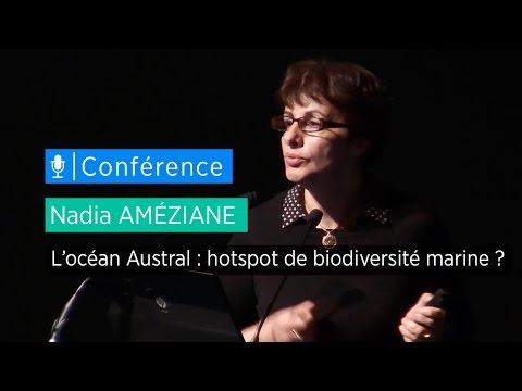 L'océan Austral : hotspot de biodiversité marine ? - Conférence de Nadia Améziane