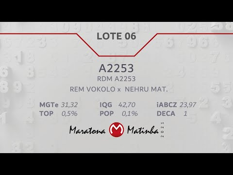 LOTE 06  Maratona Matinha