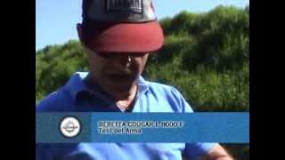 Beretta Cougar L 8000 F Test Completo por Daniel Tagliafico en TV