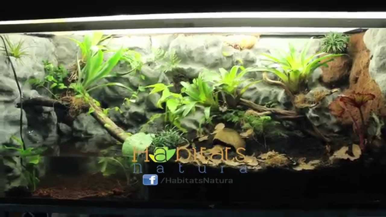 Lampara Para Tortugas Acuaterrario Tropical Grande - Youtube