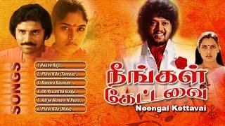 neengal-kettavai-songs-ilayaraja
