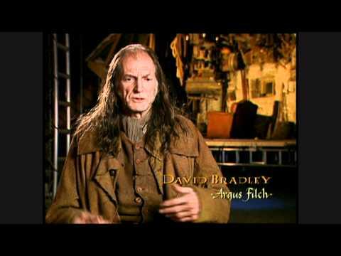 Harry Potter and the Chamber of Secrets  David Bradley short