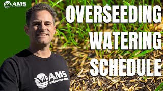 Phoenix Winter Grass Watering Schedule
