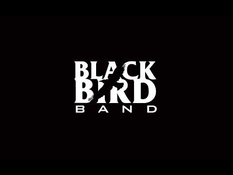 Hello Goodbye - Black Bird Band