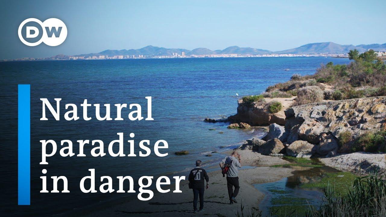 Saving Spain's largest saltwater lagoon | DW Documentary (Environment documentary)