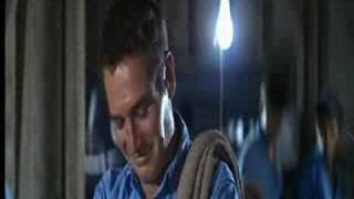 Smiles of Cool Hand Luke (full version)