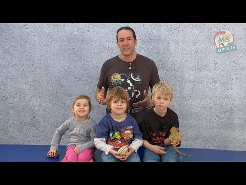 Reptil TV - Folge 63 - Kinder und Reptilien