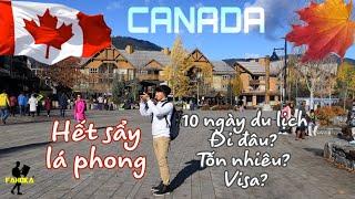 Người Việt đổ xô du lịch Canada để coi lá Phong mùa thu