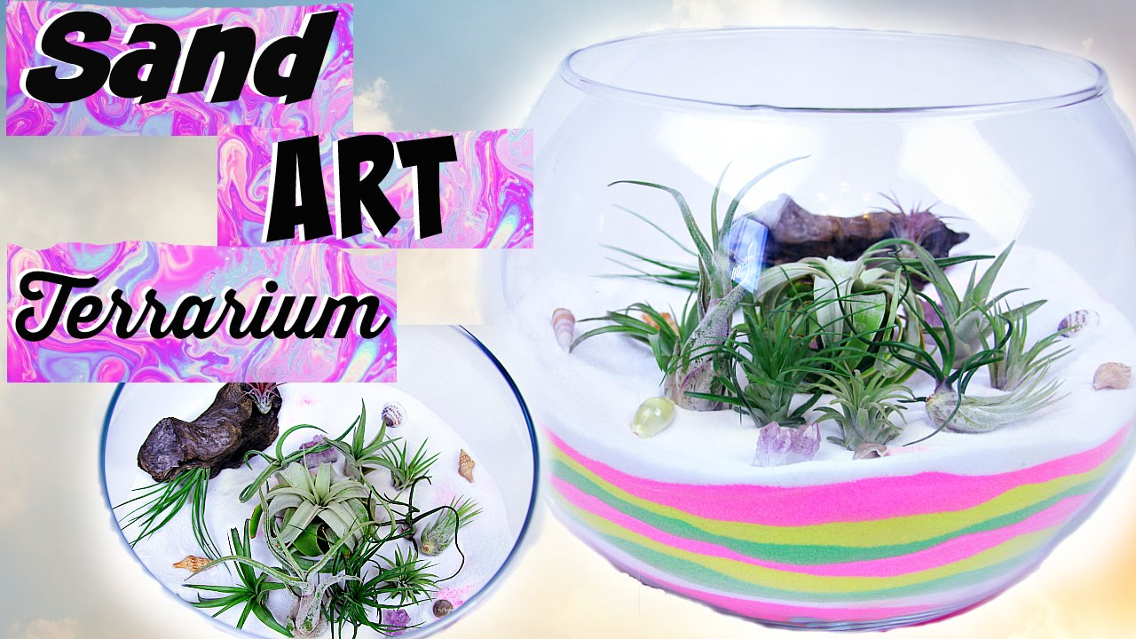 Diy Sand Art Terrarium Air Plant Room Decor Youtube