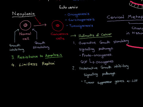 HPVs and Cervical Cancer Part 2