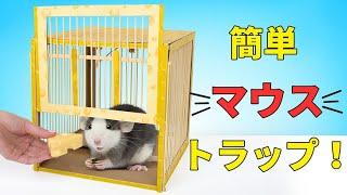 ダンボールでペットネズミ用の罠をつくろう!
