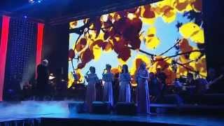 Enya Songs Concert Vilnius, Christmas 2013 part 03