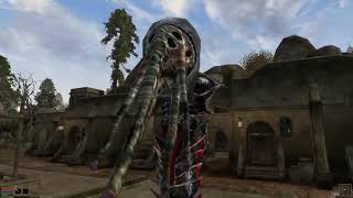 Video-Search for morrowind invisibility challenge