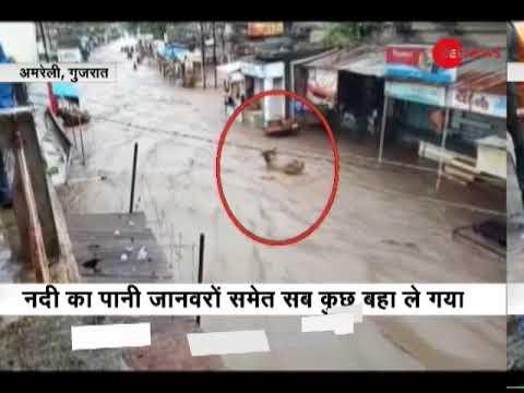 Heavy rains brings floodlike situation in parts of Gujarat