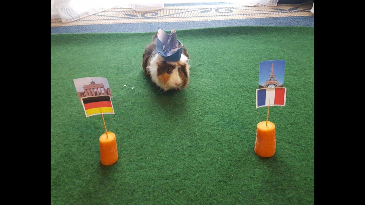 Frankreich Deutschland Em