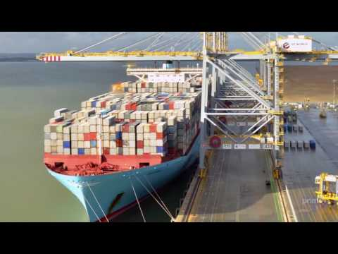 Shipping & Freight Insurance