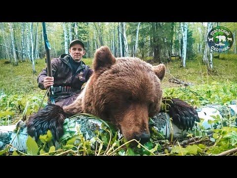 Вопрос: Зачем открывают весеннюю охоту на медведей Ваше мнение?