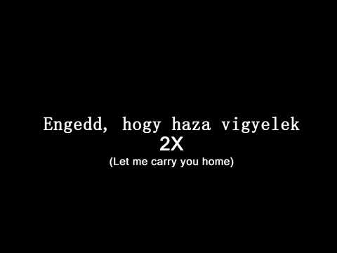 Tiësto ft. StarGate & Aloe Blacc - Carry You Home (Magyar Dalszöveg)