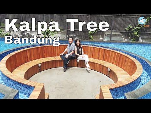 Kalpa Tree Bandung - Kafe Instagramable & Enak