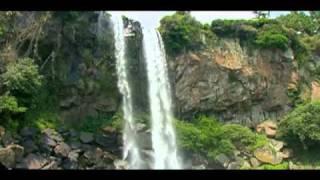 Wanna go Paradise this summer? : Jeju island(제주도)