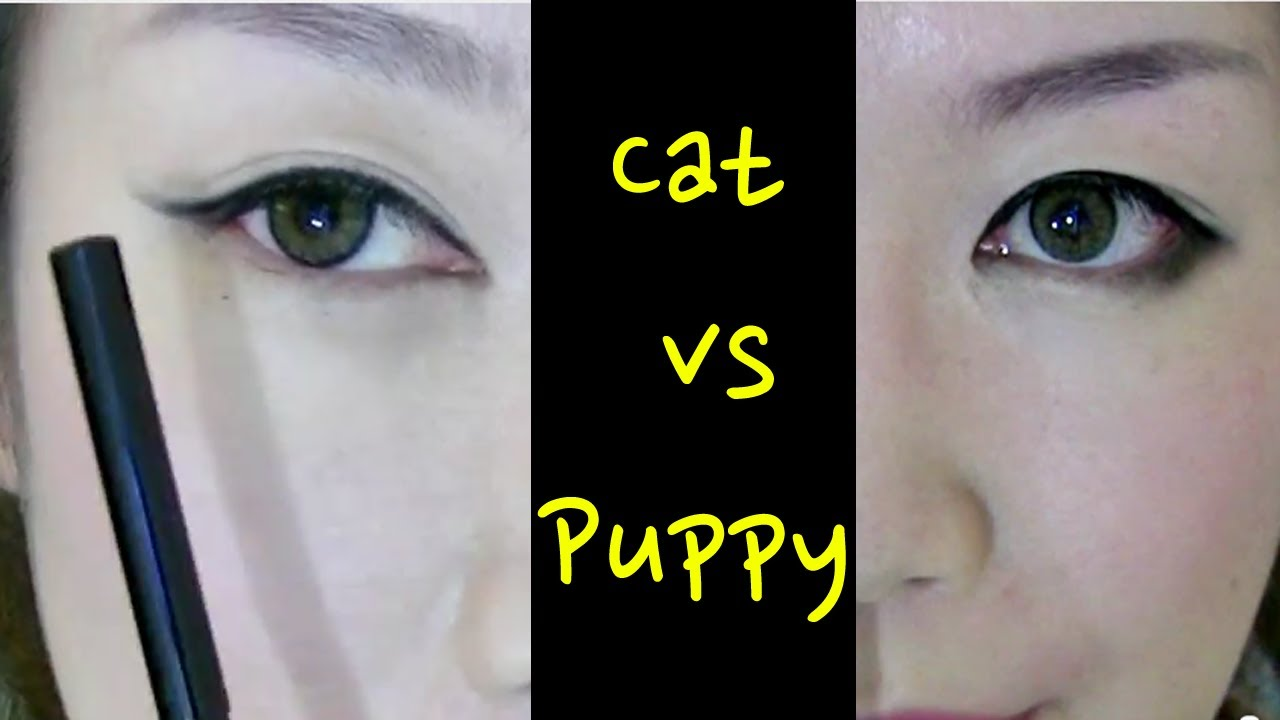 Cat Eye Vs Dog Eye