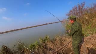 рыбалка на кубани рыбалка на реке кубань рыбалка на кубани 2019 рыбалка темрюкский район темрюк