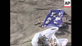 Bosnia - Exhumation Of Mass Grave