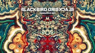 Blackbird Blackbird - Love Unlimited