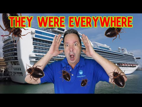 Princess Cruise Lines Sued Over Bed Bugs