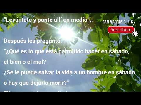 Evangelio del Dia Miercoles 20 de Enero - San Marcos 3, 1-6