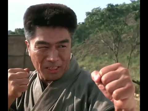 Download Jet li vs karate Master