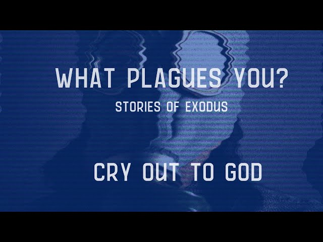 Cry Out to God   What Plagues You