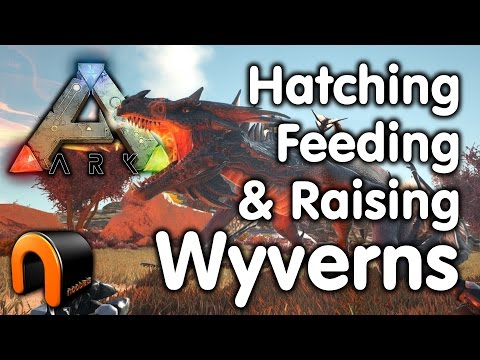 ark survival evolved how to find high level wyvern eggs